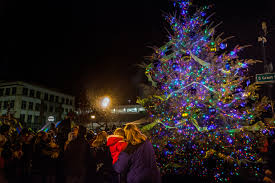 celebrate the christmas tree lighting city of roseville
