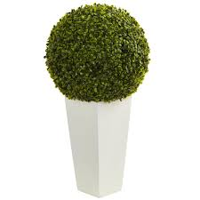 nearly 28 in indoor outdoor boxwood topiary