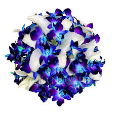 Wedding Flowers Gold Coast Blue Orchid Posy Wedding Bouquet Botanique Wedding Florists Gold