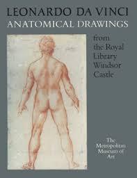 leonardo da vinci anatomical drawings from the royal library
