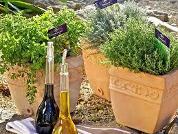 kübelpflanzen und kräuter schaffen mediterranes flair balkon - Krã Uter Balkon