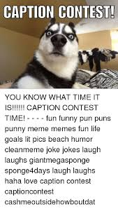 Pun Husky Meme - 25 best memes about punny meme punny memes