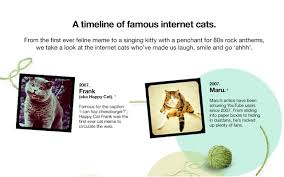 Internet Meme Timeline - a timeline of famous internet cats infographic visualistan