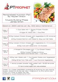 the professional u2013 daily meal plan template pt prophet fitness