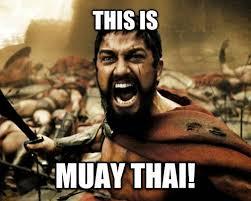 Muay Thai Memes - the siam scholar on google teep this is muay thai memes facebook