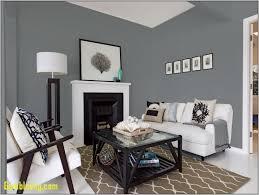 livingroom colors best color for living room walls living room colors photos colour