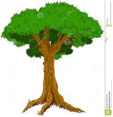 majestic tree stock vector image 42629281