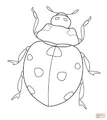 ladybug coloring page itgod me