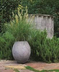 ornamental grasses garden design
