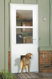 patio doors with dog door built in doors menards french doors for inspiring glass door design ideas
