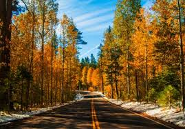 top 10 places to enjoy fall foliage in lake tahoe laketahoe