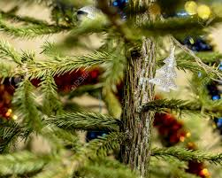 lighted christmas tree garland not lighted christmas garland hanging on a living christmas tree