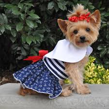 dog clothes for halloween dog clothing and custom costumes a complete line of pet supplies