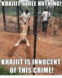 Khajiit Meme - khajiit stole nothing khajiitis innocent of this crime crime
