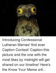 Potoo Bird Meme - 25 best memes about potoo potoo memes