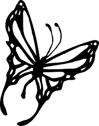butterfly clipart border black and white clipartsgram com