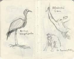 little orange sketchbook sterling sheehy u0027s art archive