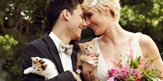 themed weddings here s the cutest cuddliest themed wedding that you ll