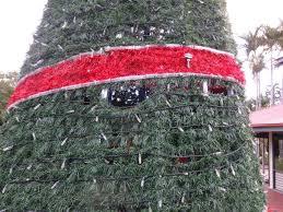 christmas lights around cairns home facebook