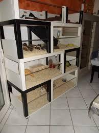 fabriquer tiroir sous lit un meuble à cochon d u0027inde à fabriquer à petit prix bidouilles ikea