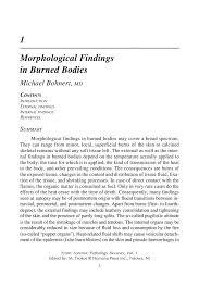 autopsy report sample morphological findings in burned bodies springer inside