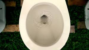 Eljer Patriot Toilet Flushing Some Of My Toilet Collection Youtube