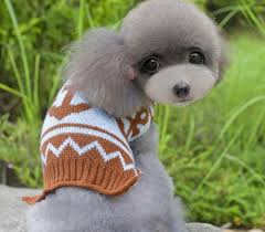 pet sweaters pet clothes pet sweater clothes pet products clothing