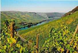 moselle moselle moselle valley