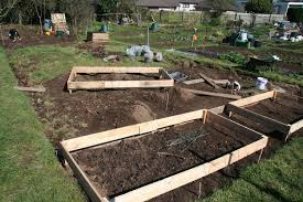 Garden Allotment Ideas Garden Allotment Ideas