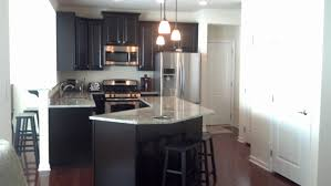 Kitchen Backsplash Ideas With Santa Cecilia Granite Www Shopnicheboutique Com Fascinating Santa Cecili
