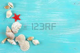Assorted Seashells Assorted Seashells Collection On Turquoise Wooden Background