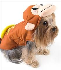 Halloween Costumes Yorkies Dogs Devil Costume Dogs Party Yorkie Dog Yorkies