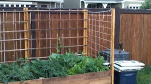 growing vertically using a simple and easy trellis youtube
