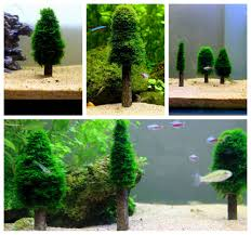 fish tank tree aliexpress buy aquarium