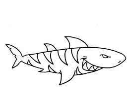 hammerhead shark clipart color pencil color hammerhead