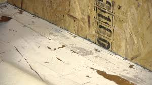 How To Pull Up Carpet From Hardwood Floors - how to remove double sided carpet tape from a wood floor
