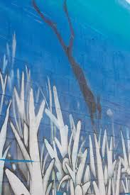 post gennifer rose gennifer rose sea walls for oceans in san diego