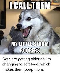 Advice Dog Meme Generator - 25 best memes about jethuth chrith jethuth chrith memes