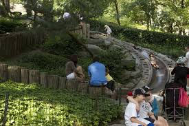 family doctors garden city best summer activities for kids in new york city