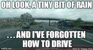 Driving Meme - 15 signs you learned to drive in texas