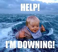 Funny Down Syndrome Memes - funny image down impremedia net