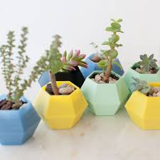 diy holiday presents for the last minute maker u2014 wearable planter