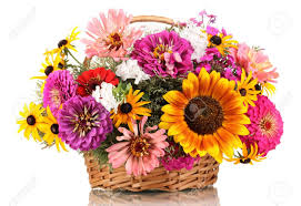 beautiful bouquet of flowers beautiful bouquet of bright flowers in basket isolated on white
