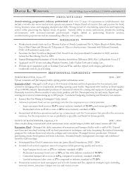 Best Resume Format Executive by 42 Examples Of Chef Resume Template Vntask Com