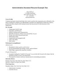 Professional Accomplishments Resume Examples by Career Profile Resume Examples Professional Profile Resume