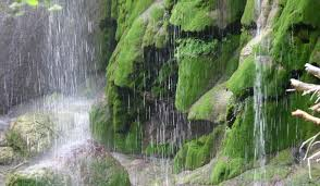 Texas waterfalls images Waterfalls in texas jpg