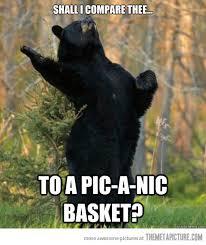 Funny Bear Meme - shakespeare s bear shakespeare funny bears and meme