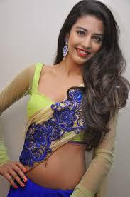 transparent saree transparent blouse designer pallu border