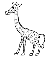 giraffe coloring pages coloring pages kids