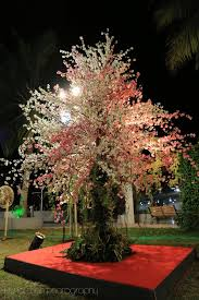 wedding wishing trees pretty sangeet at eskay resort mumbai my wedding planning